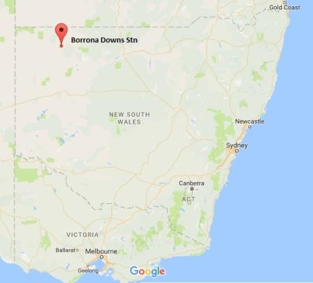 Borrona Dns map
