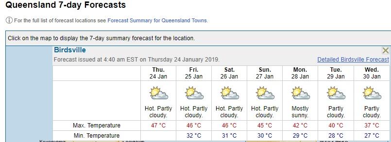 birdsville forecast