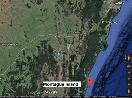 MontagueIsland map